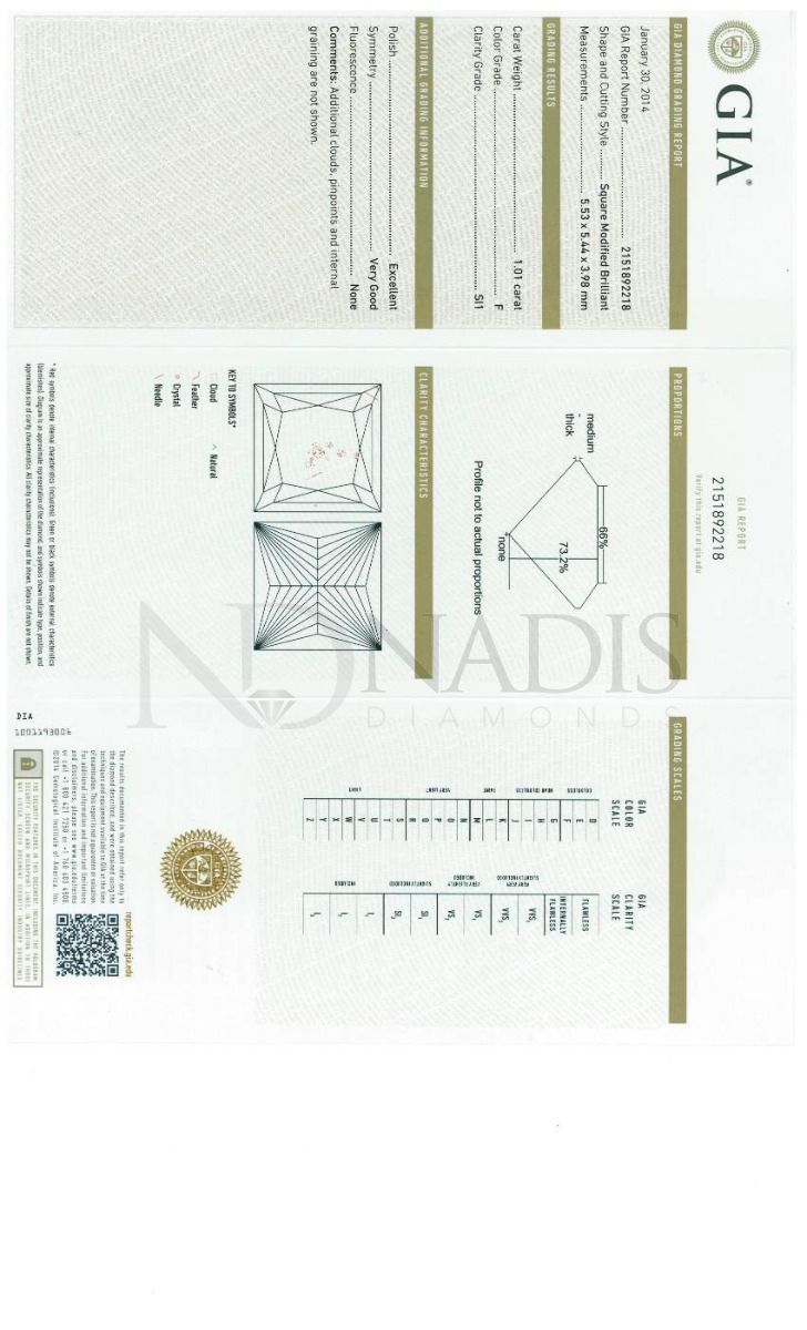 1.01 Ct. GIA Certified FSI1 Princess Cut Diamond.